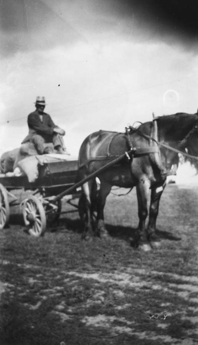 Hans Ruud med hesten Fritjof og postlasset.