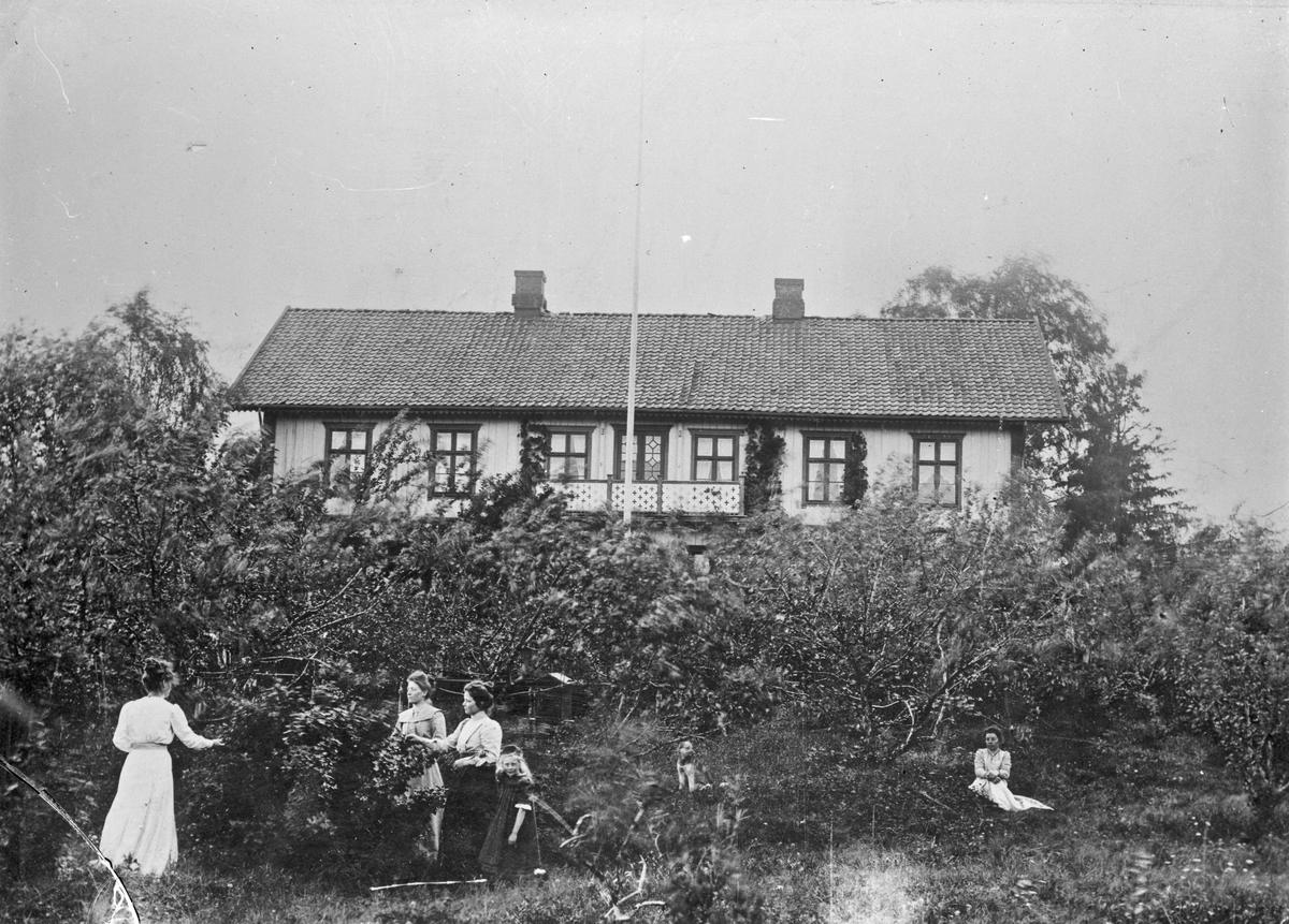 Kvinner i en hage.