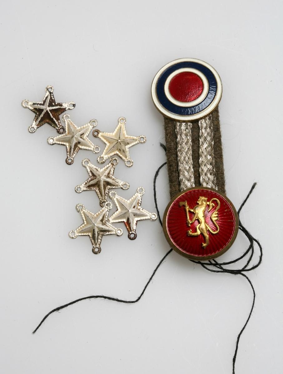 Riksløve og fargete sirkler, samt sølvfargete bånd.