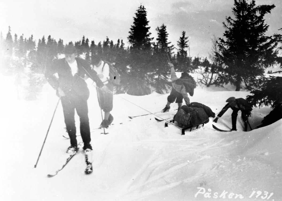 Påskeferie på Bjønnåsen. Fire skiløpere trekker skikjelke.