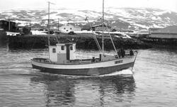 """Svein Frode"" F 12 BD på tur inn havna i Berlevåg, 1962"