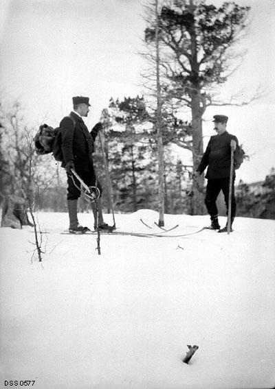 to menn på ski, skade på skog av rein og mus.   Den overordnede forstmannen har to staver mens den lokale skogvokteren bruker enkelt stokk for å gå på ski med.
