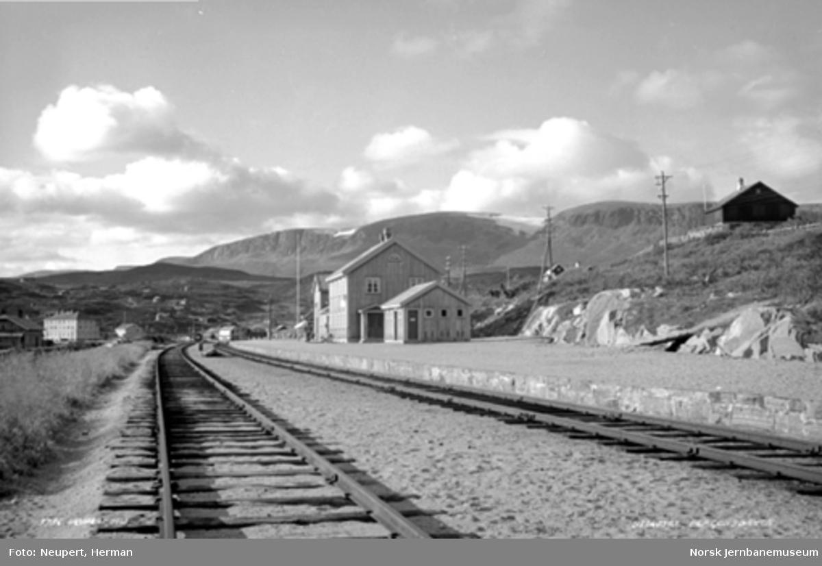Sommerbilde fra Ustaoset stasjon