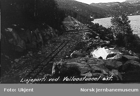 Linjeparti langs østre innslag til Voilås tunnel
